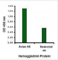 GTX41297 - Influenza A H5N1