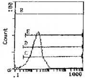 GTX41339 - CD11a / ITGAL
