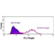 GTX42494 - CD112 / Nectin 2