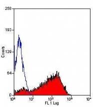 GTX43039 - CD62P / P-Selectin