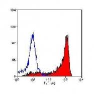 GTX53827 - CD18 / ITGB2