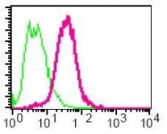 GTX61967 - AP2 complex subunit mu-1 / AP2M1