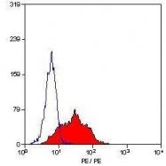 GTX75142 - CD105 / Endoglin