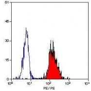 GTX75219 - CD54 / ICAM1