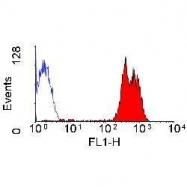 GTX76309 - CD43 / Leukosialin