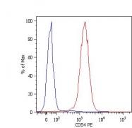 GTX78387 - CD54 / ICAM1