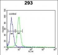 GTX80536 - RPL18A