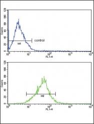 GTX81505 - Apolipoprotein L1 (Apo L1)