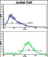 GTX81846 - VIP peptides