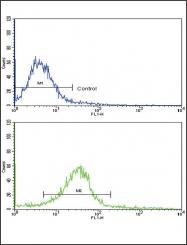 GTX81923 - Ectodysplasin-A