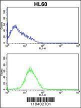 GTX82535 - Caspase-2