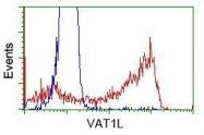 GTX83428 - VAT1L