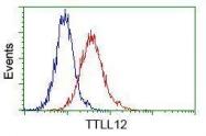 GTX83476 - TTLL12