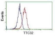 GTX83482 - TTC32