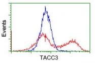 GTX83529 - TACC3 / ERIC1