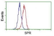 GTX83575 - Sepiapterin reductase / SPR