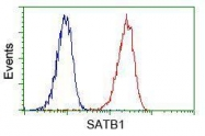 GTX83679 - SATB1