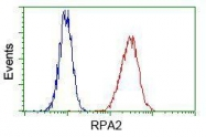 GTX83693 - RPA2