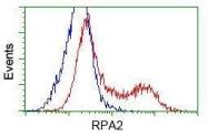 GTX83695 - RPA2