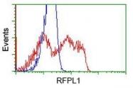 GTX83715 - RFPL1 / RNF78
