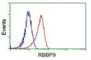 GTX83717 - RBBP9 / BOG