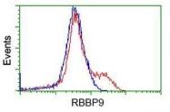 GTX83720 - RBBP9 / BOG