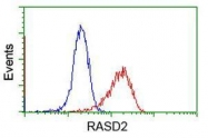 GTX83723 - RASD2 / TEM2