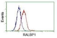 GTX83726 - RALBP1