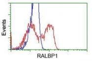 GTX83729 - RALBP1