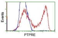 GTX83759 - PTPRE