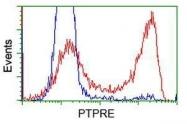 GTX83760 - PTPRE