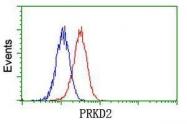 GTX83819 - PRKD2 / PKD2
