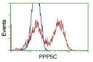 GTX83838 - PPP5C
