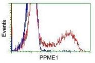 GTX83848 - PPME1