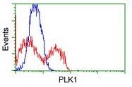 GTX83862 - PLK1