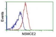 GTX83995 - NSMCE2