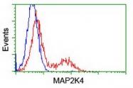 GTX84162 - MAP2K4