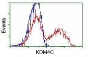 GTX84279 - JMJD2C / KDM4C