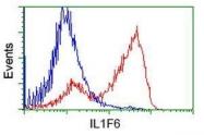 GTX84298 - IL1F6 / IL1E