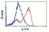 GTX84299 - IL1F6 / IL1E