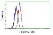 GTX84347 - HSD17B10 / ERAB
