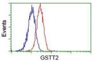 GTX84398 - GSTT2