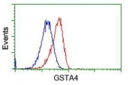 GTX84405 - GSTA4