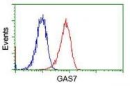 GTX84466 - GAS7