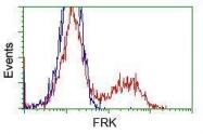 GTX84481 - FRK / PTK5