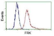 GTX84484 - FRK / PTK5