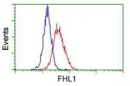 GTX84494 - FHL1