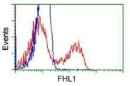GTX84496 - FHL1