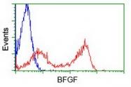 GTX84500 - FGF basic / FGF2