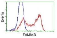 GTX84522 - FAM84B